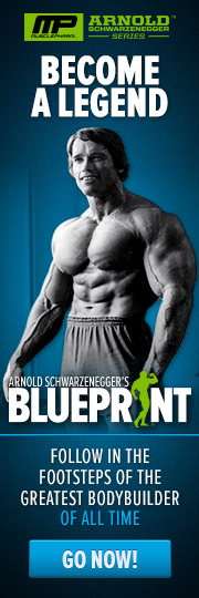 Arnold Blueprint Trainer